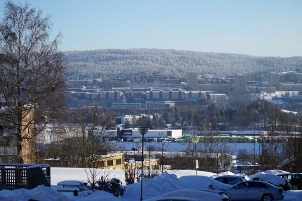 Oslo en segregert by