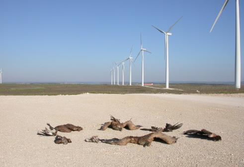 Den ubehagelige sannheten om nasjonal ramme for vindkraft